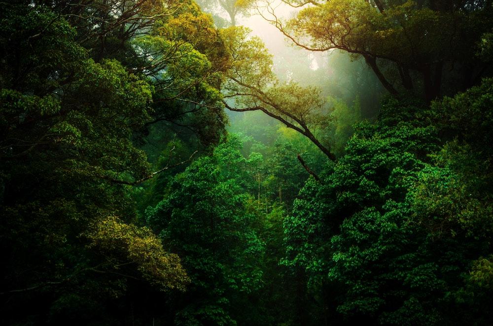 Clusters Turismo da Natureza