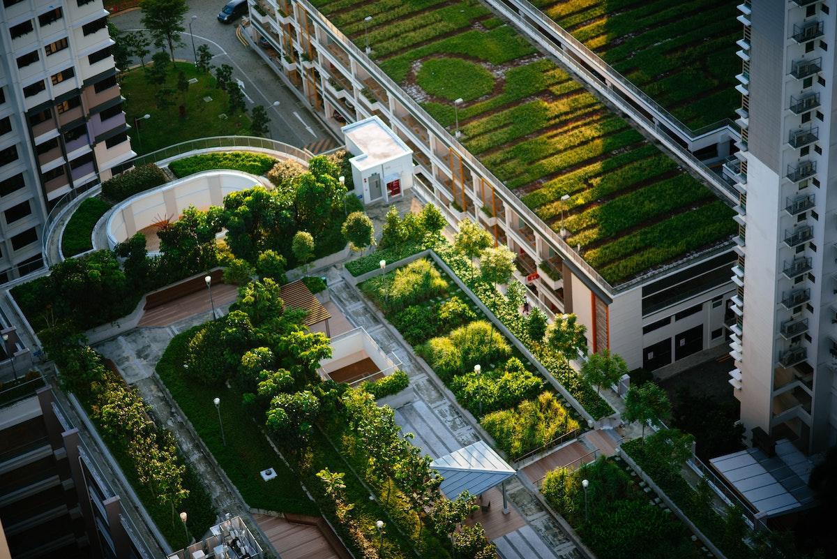 EcoInovação para a Transformação Verde